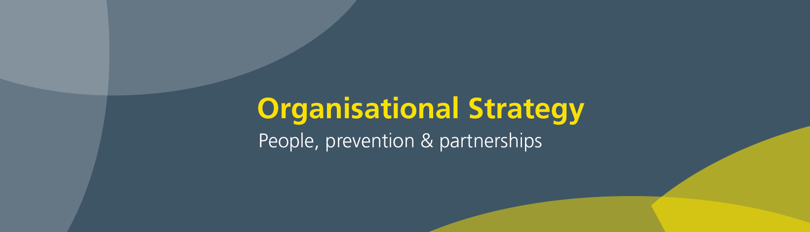 Our organisational strategy